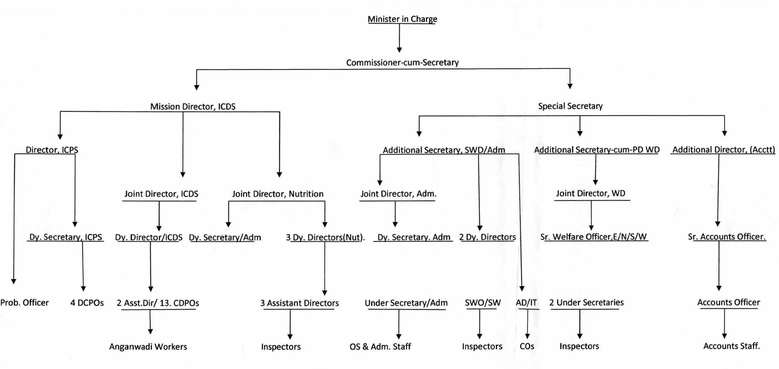 Image-Organizational Chart of the Department